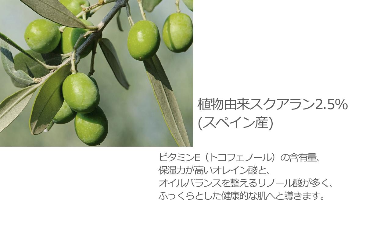 植物由来スクアラン2.5%(スペイン産)オリーブオイル由来の天然保湿成分。肌への吸収力が高く、皮脂をおさえ爽やかさな保湿感じです。