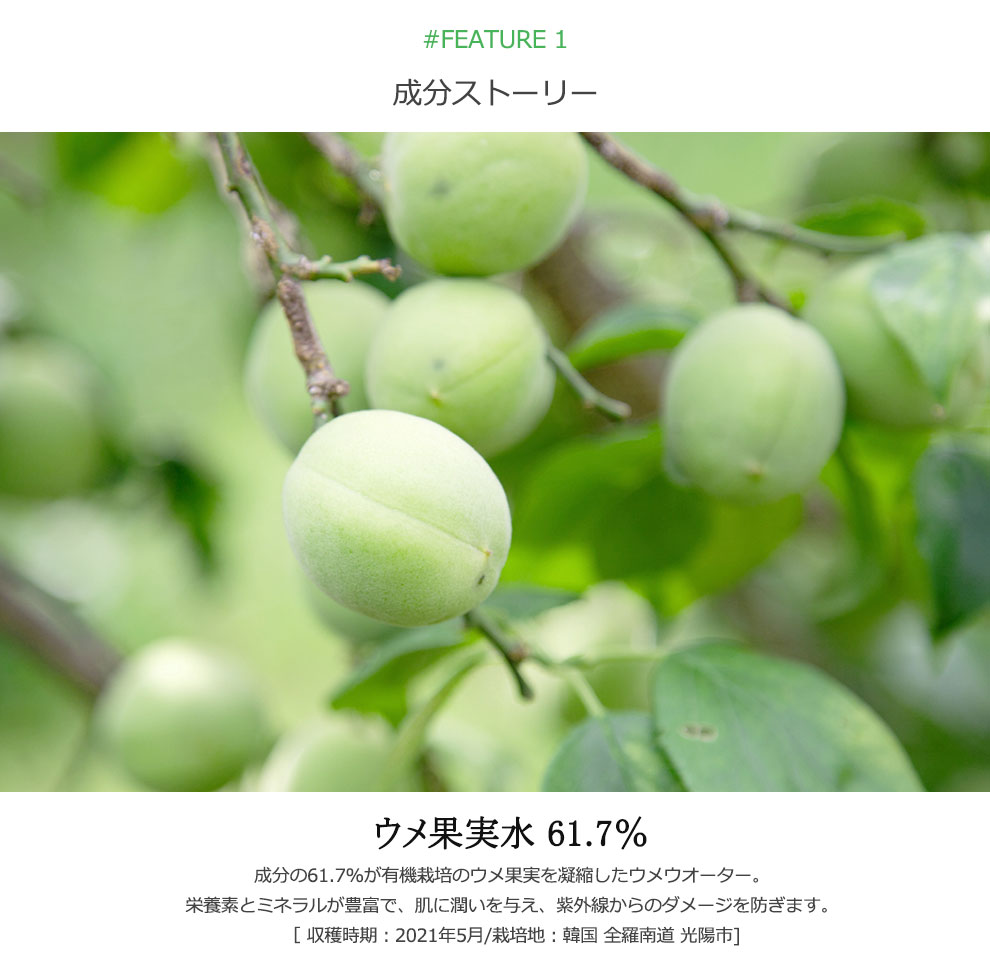 成分の61.7%が有機栽培のウメ果実を凝縮したウメウオーター。栄養素とミネラルが豊富で、肌に潤いを与え、紫外線からのダメージを防ぎます。